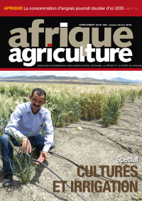 Supplément cultures et irrigation d'Afrique Agriculture 428 de janvier/février 2019