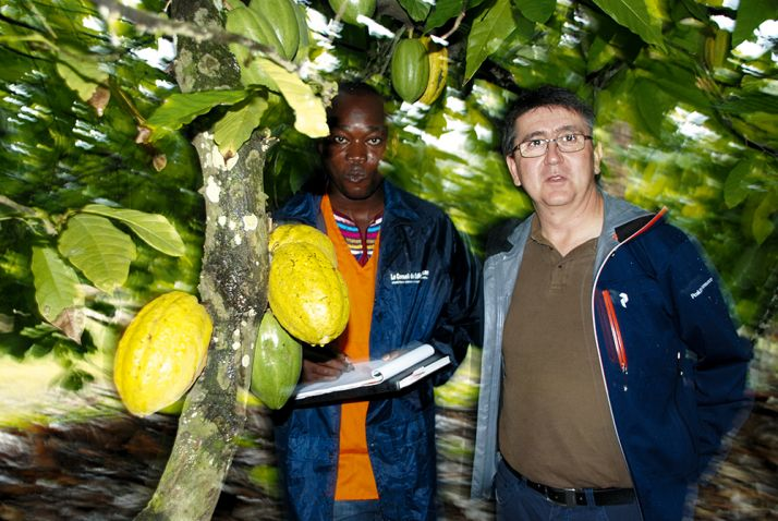 Patrick Poirrier (à dr) et un cadre du Conseil café-cacao dans la plantation de Nouhou N'Diaye  à Azaguié. © Antoine Hervé.