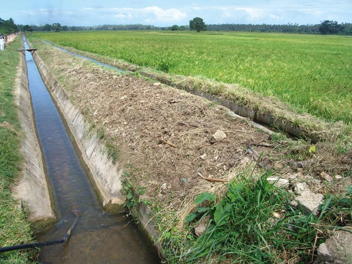 Canaux d'irrigation dans l'État de Sokoto au nord du Nigeria.  Photo : News Agency of Nigeria