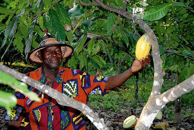 Antoine Bazimba, responsable de la Fredy's plantation.