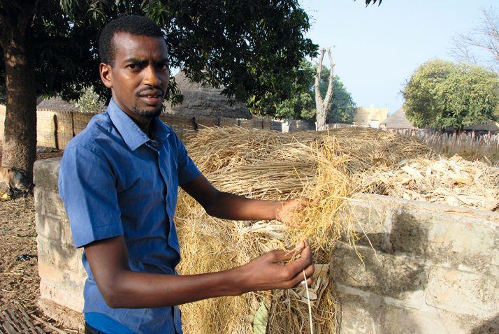 Souleymane Baldé, qui a un troupeau en plus d'être coordinateur  à la fédération, montre la paille de riz qui sert de fourrage à ses animaux.