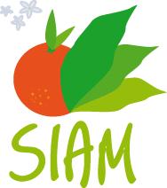 """Résultat de recherche d'images pour """"siam"""""""