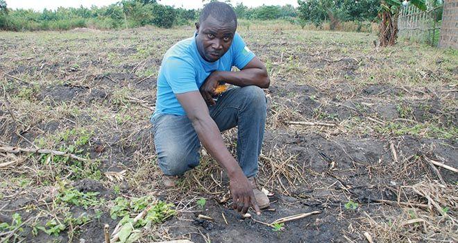 Le changement climatique affecte le travail des sols  en Afrique, comme ici au nord de Lomé au Togo. Photo: Antoine Hervé
