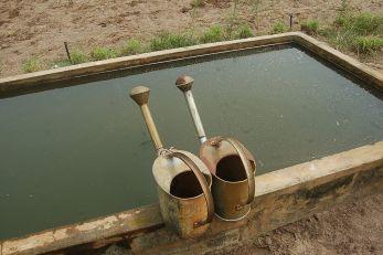 Ils n'attendent que l'eau et le porteur…