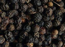 Poivre noir de qualité premium. Photos : DR