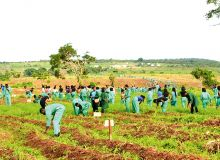 Les étudiants de Landmark University en plein travaux champêtres. Photo: D. Aliyou