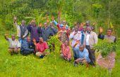 La renaissance du café congolais