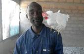 «Je n'avais pas de place ici jusqu'à ce que l'État sénégalais décide d'arrêter toutes les importations de poulets  et de matériels avicoles.» Photo: DR