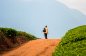Les paysans africains savent cultiver leurs terres mieux que quiconque. © fotolia
