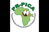 PR-PICA: la filière coton se réunit à Cotonou