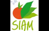 Siam 2019
