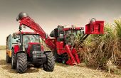 La récolteuse de cannes Austoft au travail. Photo : case IH